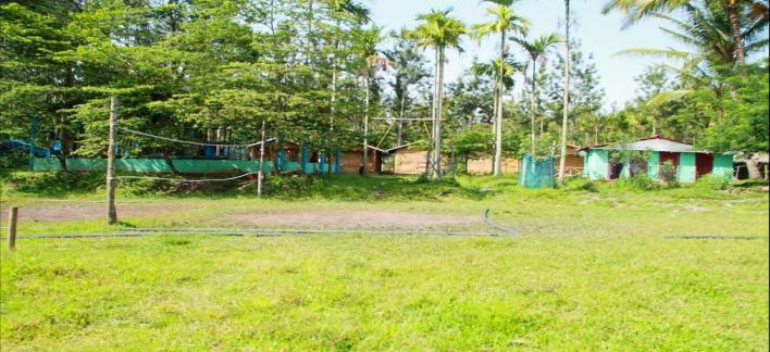 Deep Jungle Home Property View