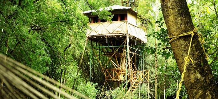 Safari Land Villa Property View