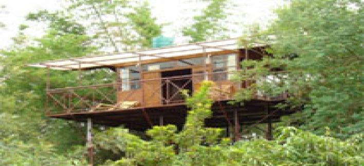Safari Land Resorts Property View