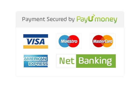Pay U Payment Gateway